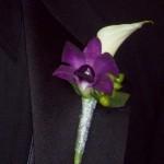 white calla purple orchid
